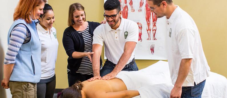 Advanced Massage Therapy Training Program